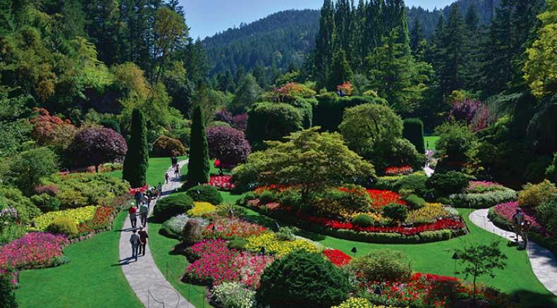 screen-Arboretum