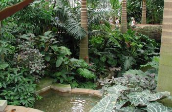 Maputo-Botanical-Gardens-