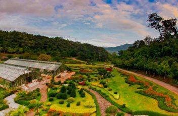 Chollipo-Botanical-Garden-site-news