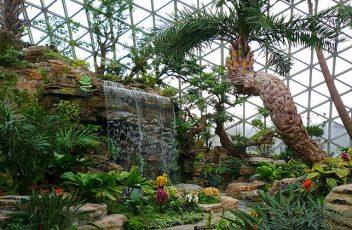 Chenshan-Botanical-Garden