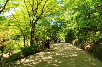 Higashiyama-
