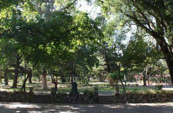 Maputo-Botanical-Gardens