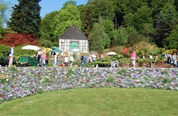 Botanischer-Garten---BOGA-news