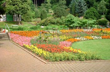 news-Botanischer-Garten---BOGA