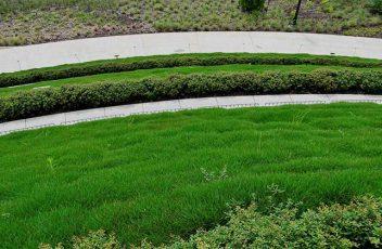 site-Chollipo-Botanical-Garden-news